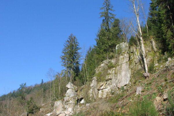 Wanderbarer Schwarzwald, leicht und manchmal auch schwerer zu erkunden.